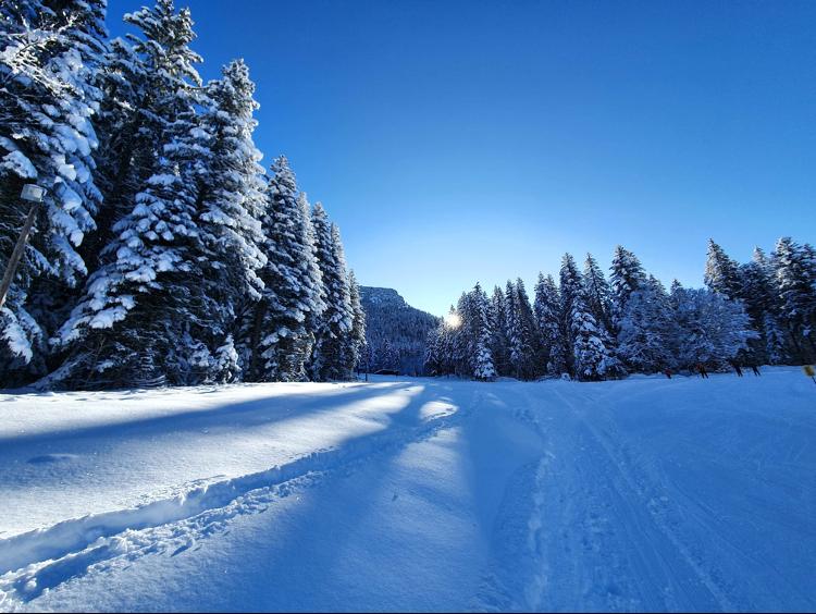 pistes de ski nordique du col de Porte en Chartreuse