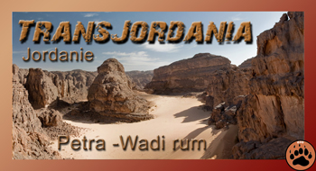 Transjordania
